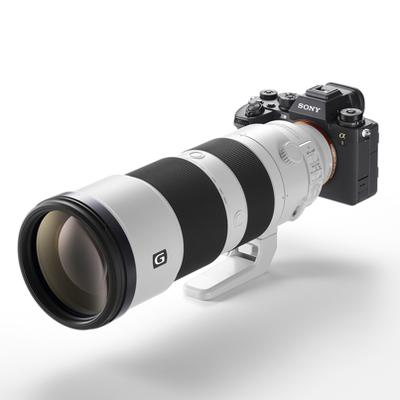 Sony Alpha A1 + SONY FE 200-600mm F/5.6-6.3 G Lens Package FREE GIFT SCEA-G80T/80GB CARD
